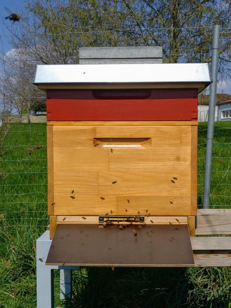 Dadant Beute mit Honigraum
