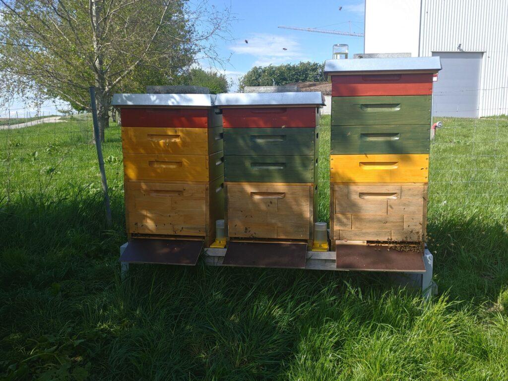 Honigräume Mai 2020